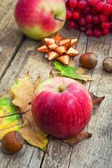 Ripe,sweet apple autumn harvest and fallen leaves