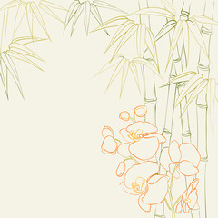 Orchid flowers and bamboo.
