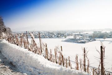 Eingeschneiter Weinstock vor Dorf