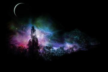 Magical Landscape