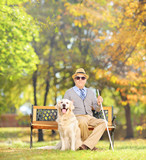 Senior blind gentleman sitting on a bench with his dog, in park