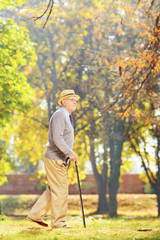 Senior gentleman walking with a cane in a park, in autumn