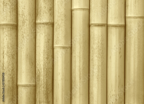 close up of wall made of bamboo planks