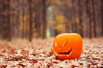 Jack-o-lantern on forest path