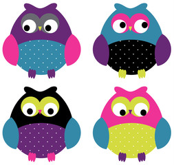 Adorable Owl Set