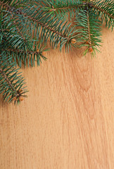 Fir-tree branch on wood