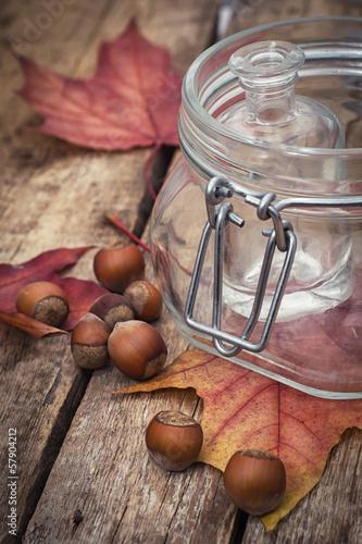 Forest hazelnuts in shell