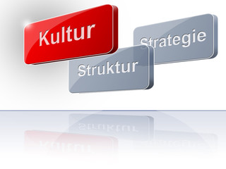 Kultur Struktur Strategie