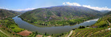 Valley of river Douro with vineyards (Portugal)