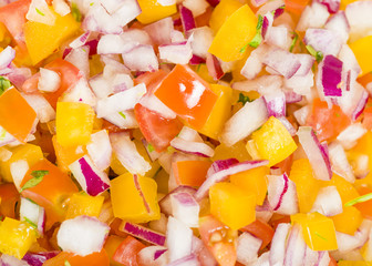 Pico de Gallo - Mexican salad with onions, tomatoes and peppers.