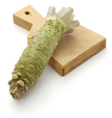 wasabi and shark skin grater