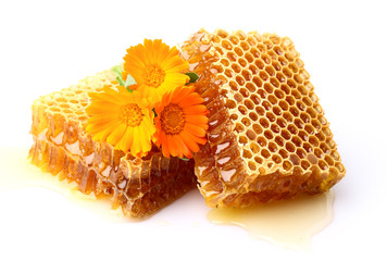 Honeycombs with calendula