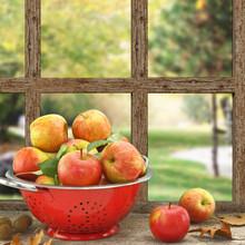Äpfel im Küchensieb auf Holz-Fenster mit Aussicht