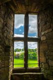 Altes Fenster mit Blick auf den Garten - 57917465