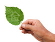 Eco house concept, hand holding eco house icon in nature isolate