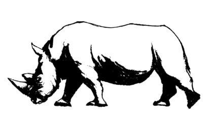 Rhino sketch silhouette