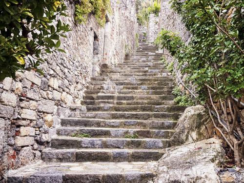 steps - 57921858