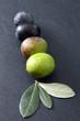 Processo di maturazione olive