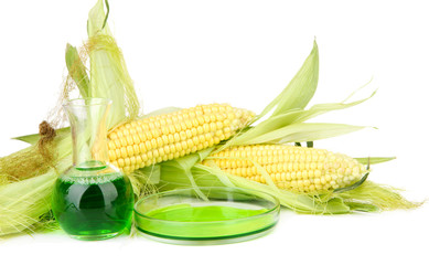 Conceptual photo of bio fuel from corn.  Isolated on white