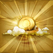 Gold coin, old style background