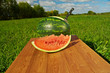 Watermelon slices on a wooden table