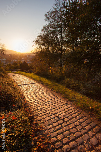 path on schlossberg in freiburg