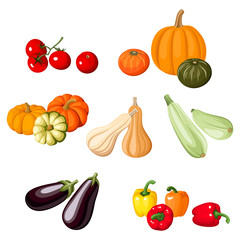 Various vegetables. Vector illustration.
