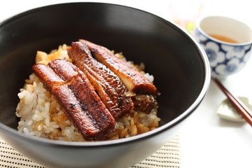 Japanese food, grilled eel Unagi on rice