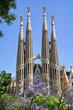 Sagrada Familia. Barcelona, Spain.