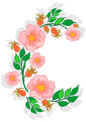 Illustration of abstract pink roses frame