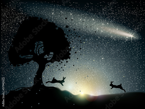 Rabbits fall in love / Romantic card with comet on the sky