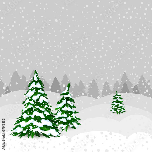 Winter forest in vector