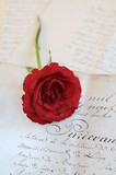 Rose on antique letters