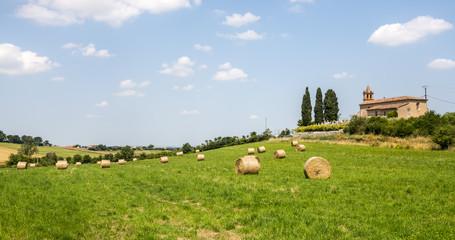 Countryside near Albi (France)