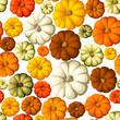 Pumpkins. Vector seamless background.