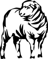 stylized sheep