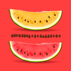Slice of yellow and red watermelon, vector Eps10 image.