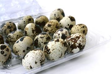 quail eggs in a box