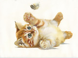 Watercolor Animal Collection: Cat and feather
