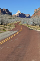 Road to the mountains, Zion National Park