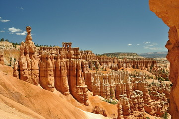 sandstone towers in Bryce Canyon