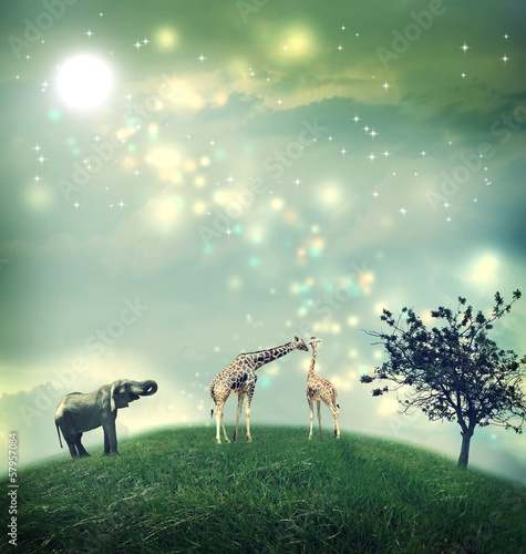 Plexiglas Olifant Giraffes and elephant on a hilltop