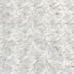 white plush or wool texture