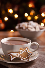 A cup of hot chocolate with gingerbread