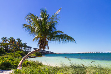 Landscape at Bahia Honda Beach