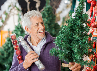 Man Holding Christmas Tree And Ornaments