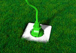 Plug into a grassy ground