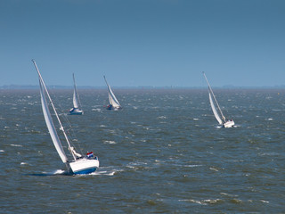 Sailing boats in strong wind