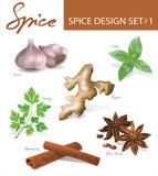 Fototapety Spice images design set 1. Vector illustration.