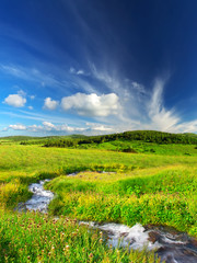 River on the field. Beautiful summer landscape